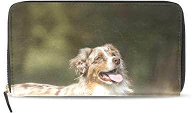 Credit Card Case Clumber Spaniel Business Card