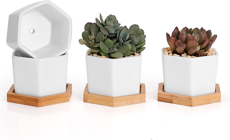 Backyard Moments Succulent Plant Pots, Hexagon Planter, Flower Pots, Set of 4, White