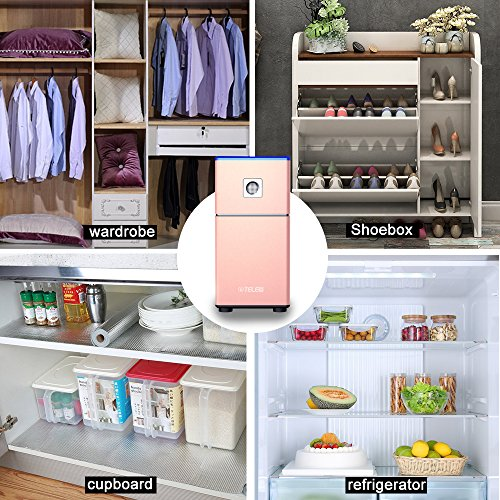 HEPA Filter, Refrigerator Purifier   Compact Odor Allergen Eliminator Cleaner,Ozone Sterillization,Sterilizing Deodorizer Purifier for Refrigeration,Kitchen,Shoe Cabinet,Wardrobe (Rose Gold)
