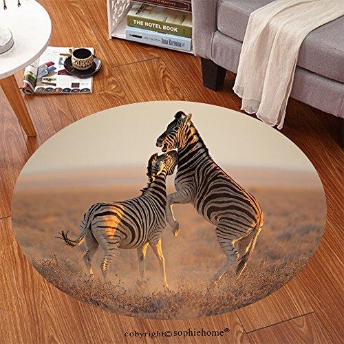 Sophiehome Soft Carpet 118554685 Two Plains (Burchells) Zebra stallions (Equus burchelli) fighting, Etosha National Park, Namibia Anti-skid Carpet Round 24 (Two Burchells Zebras)