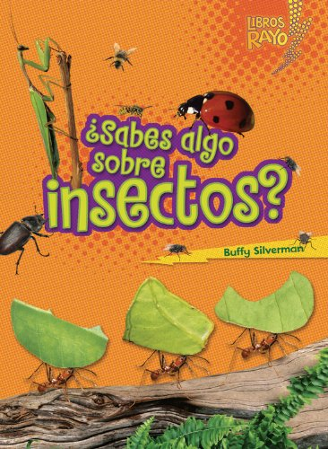 ..Sabes algo sobre insectos?/ Do You Know about Insects? (Libros Rayo - Conoce Los Grupos De Animales /Lightning Bolt Books T - Meet the Animal ... Bolt Books ™ — Meet the Animal Groups)) [Buffy Silverman] (Tapa Blanda)