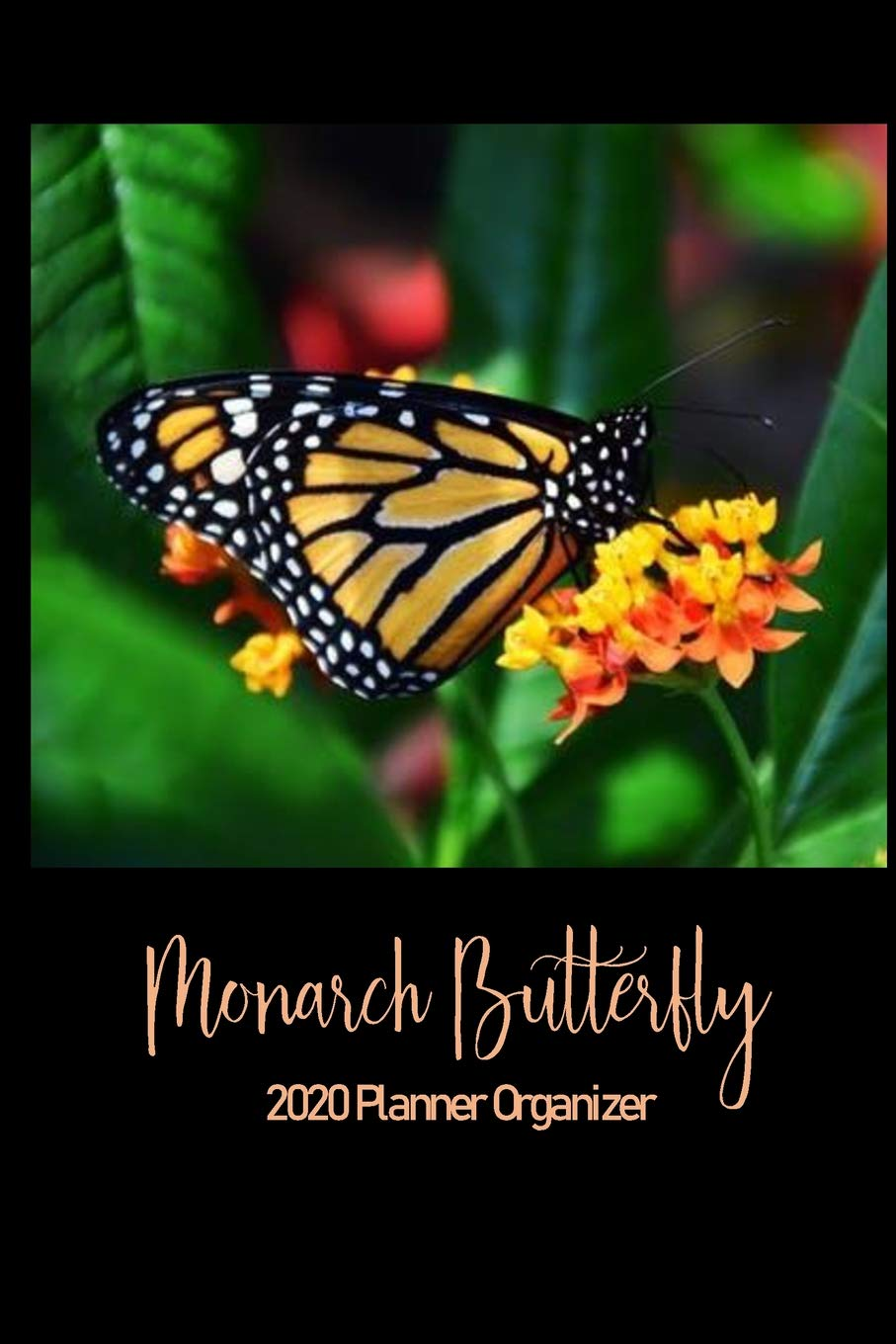 Monarch Butterfly 2020 Planner Organizer: Monthly Weekly ...