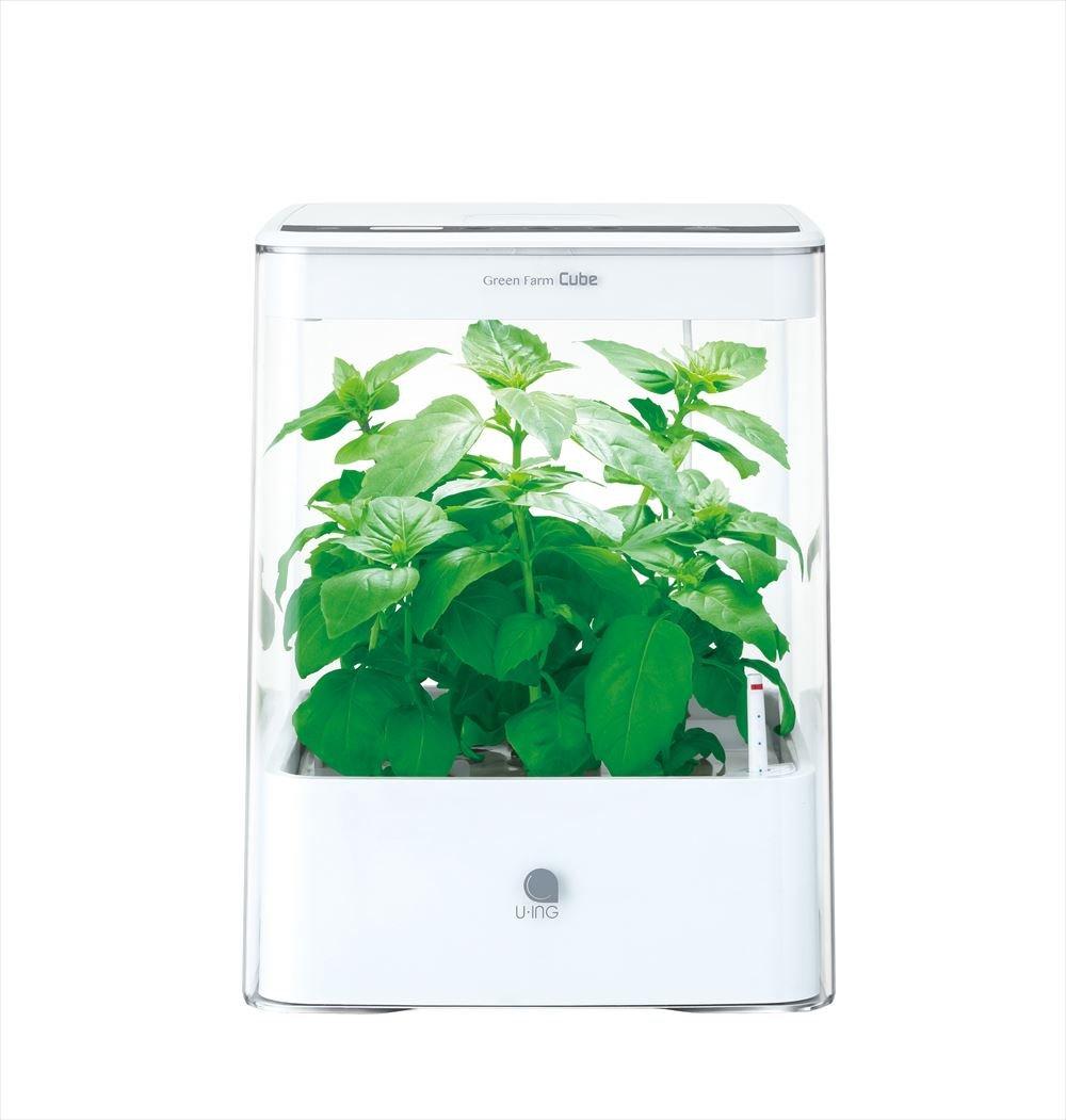 ユーイング水耕栽培キットグリーンファームキューブ