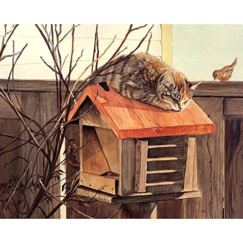 - Paint By Number Kits 16 x 20 inch Canvas Diy Oil Painting for Kids,Students,Adults Beginner with Brushes and Acrylic Pigment Mailbox Cat 16x20 inch(No Framed)