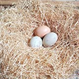 BWOGUE 100g/3.5oz Natural Grass Nesting Pads for