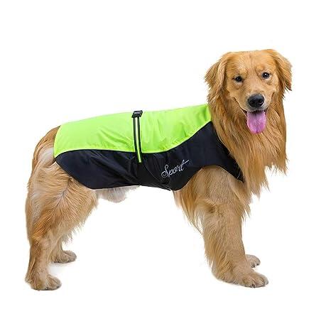 PURIN PLAN Disfraz de Perro Grande, Perro, para Perro o Perro ...