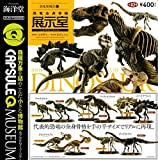 Capsule Q Museum dinosaur excavation Chronicle 6 General dinosaur skeleton exhibit room the 10 kinds set (set)