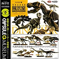 Capsule Q Museum dinosaur excavation Chronicle 6 General dinosaur skeleton exhibit room the 10 kinds set (set)