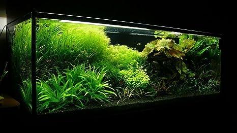 25 kg de sustrato de acuario natural negro (arena 1 – 1,6 mm