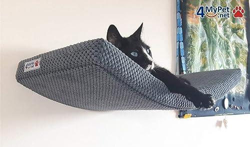 cat shelves amazon