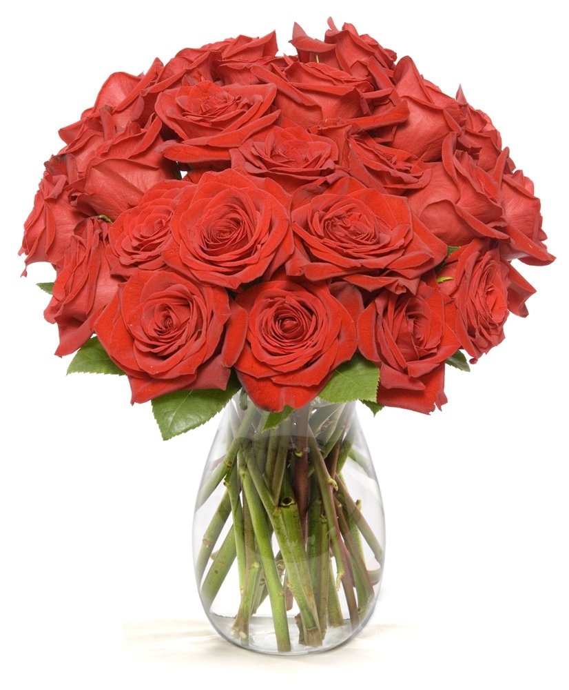 Amazon Benchmark Bouquets 2 Dozen Red Roses With Vase Fresh