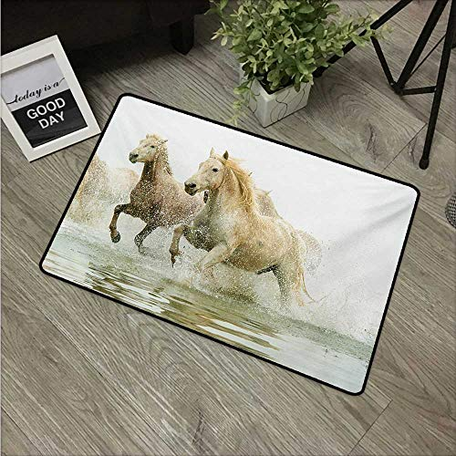 HRoomDecor Horses,Funny doormats Camargue Horses in Water Ancient Oldest Breed Southern France Origin Artful Photo W 24
