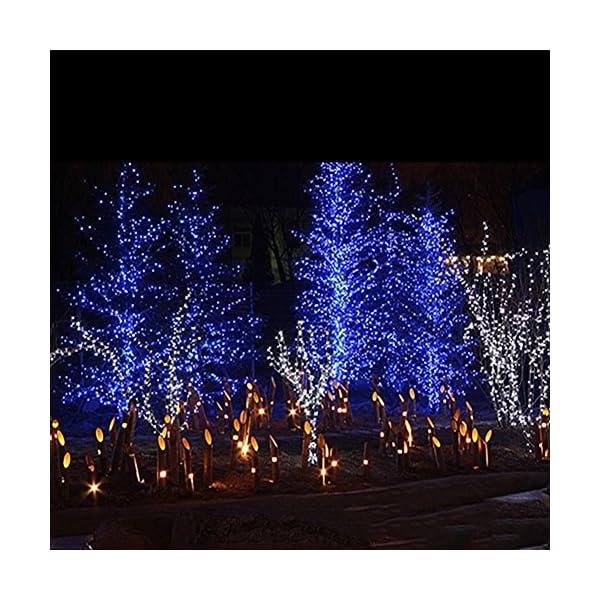 LED Tenda Luminosa, Catena Luminosa, Luci cascata, Luci per Tende, 216 LEDs 5M Natale Luci Stringa Bianco Caldo 8 Modalità Impermeabili IP44, per Natale finestra, porta, patio, giardino, feste, Blu 4 spesavip