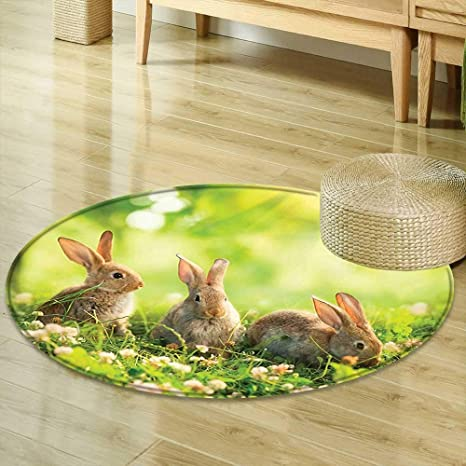 Amazon Com Mikihome Round Rugs For Bedroom Animal Decor Funny