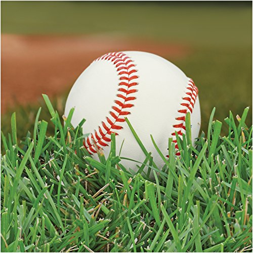 Creative Converting 18 Count Sports Fanatic Lunch Napkins, White/Green (Baseball Dinner Plates)