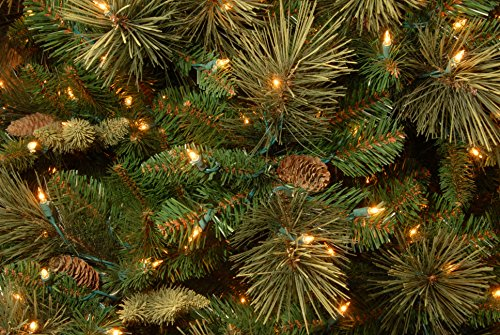 National Tree 7.5 Foot Carolina Pine Tree with Flocked Cones and 750 Clear Lights, Hinged (CAP3-306-75) by National Tree Company (Image #7)
