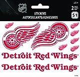 Detroit Red Wings Mini Foldove
