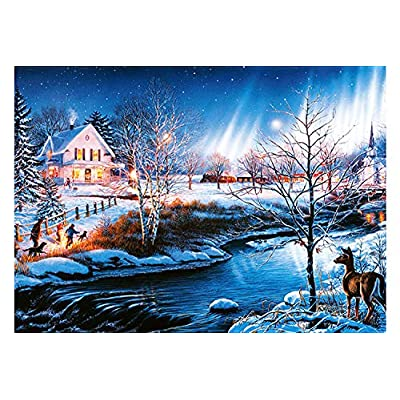 LONSSEN Jigsaw Puzzles 1000 Pieces for Adults & Children Kids, Cardboard Puzzles, Themes Puzzle Sets for Family, Educational Games, Floor Table Brain Challenge Puzzle (Snow Night Aurora): Toys & Games