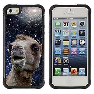 Hybrid Anti-Shock Defend Case for Apple iPhone 5 5S / Space Camel Kimberly Kurzendoerfer