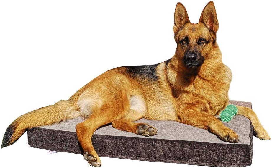 Cama para Perros Ortopédica Grande   Funda y Núcleo 100% Lavable   Antibacteriano   Tejido Especial para Mascotas   90 x 60 x 9 cm (90x60x9cm)