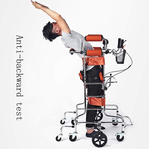 Amazon.com: Standing Walking Bracket/Walker/Bracket ...