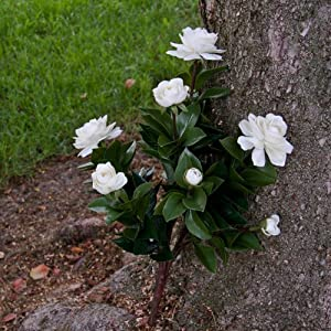 19 Inch Outdoor Artificial Gardenia in White 76