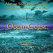 Nature Sounds Collection: Sea Waves, Vol. 1 (Ocean Coast)