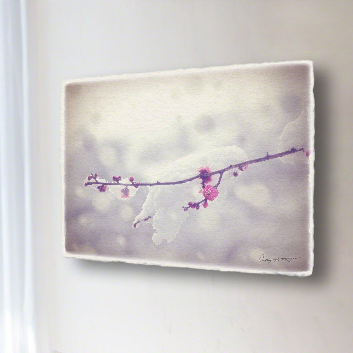 和紙 アートパネル「雪を乗せた一枝の紅梅」 (40x30cm) 花 絵 絵画 壁掛け 壁飾り インテリア アート B07BGZRXN1 14.アートパネル(長辺45cm) 18800円|雪を乗せた一枝の紅梅 雪を乗せた一枝の紅梅 14.アートパネル(長辺45cm) 18800円