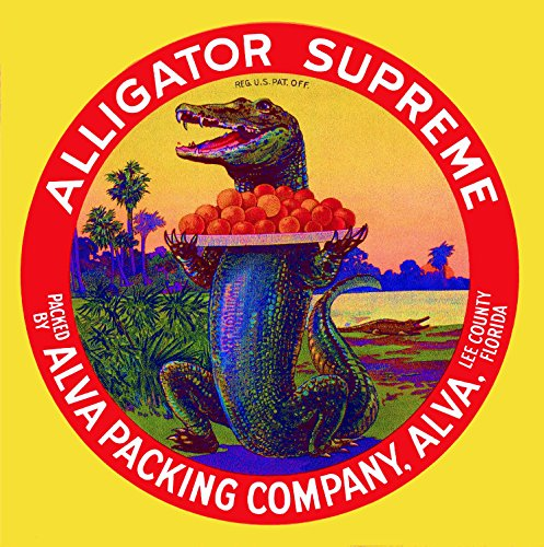 A SLICE IN TIME Alva, Lee County Florida Alligator Supreme Orange Citrus Fruit Crate Label Art Print