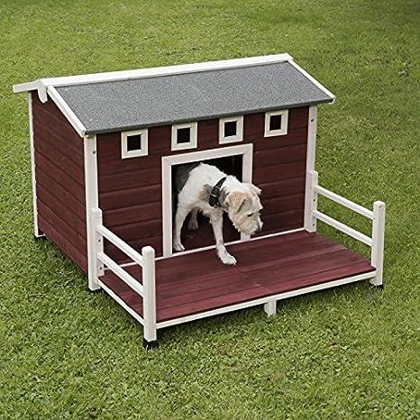 animalmarketonline Caseta para perros litera de madera para exterior Santoku L 114 x p 103,5 x H 76 cm: Amazon.es: Productos para mascotas
