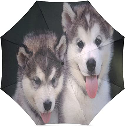 Custom Husky Dogs Compact Travel Windproof Rainproof Foldable Umbrella