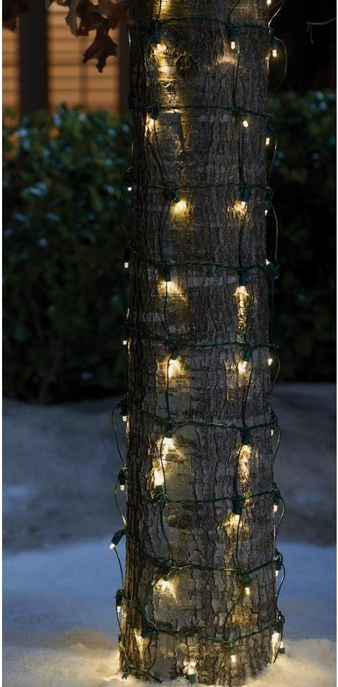 Home Accents Holiday 2 ft. x 10 ft. 144-Light Dome LED Warm White Net Light