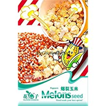 Hot Selling 30pcs Popcorn Seeds, Corn Seeds, Good Material to Make Popcorn, Garden Bonsai Potted Plant