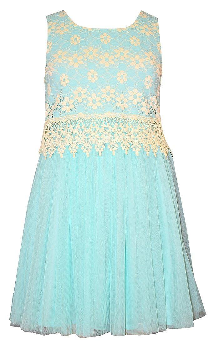 1e9e21a1a Amazon.com  Bonnie Jean Little Girls Aqua Lace Tulle Dress  Clothing