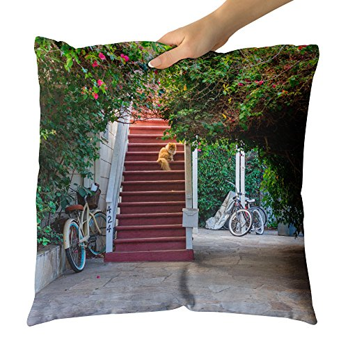 ay Plant - Decorative Throw Pillow Cushion - Picture Photography Artwork Home Decor Living Room - 18x18 Inch (D55C2) ()