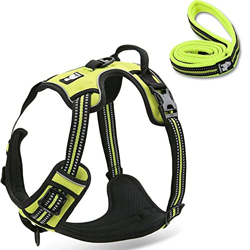 fiE FIT INTO EVERYWAY Range Of Front Side No Pull Dog Harness Outdoor Adventure 3M Reflective Pet Vest with Handle Adjustable Protective Nylon Walking Pet Harness (S, Green Set)