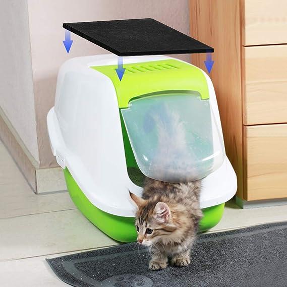 Dadabig 10 Piezas Filtros de Carbono para Gatos Filtros para ...