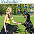 Dog Training Collar Shock Collar Dogs Rechargeable and Waterproof dog Shock Collar Remote Beep Vibration Shock Harmless Bark Collar for Small Medium Large Dog,1000ft Remote shock Electronic Collar