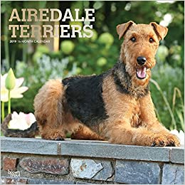 amazon airedale terriers 2019 calendar browntrout publishers