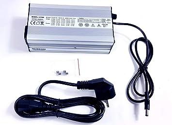 TZIPower - Cargador para batería de Bicicleta eléctrica de 60 V y ...