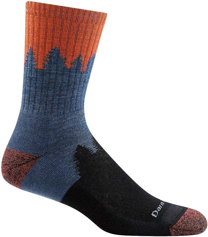 Darn Tough Number 2 Micro Crew Cushion Socks - Men's