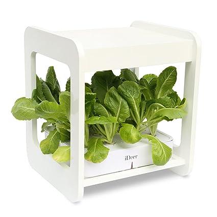 Amazon Com Ideer Life Mee Kitchen Smart Indoor Gardening System W
