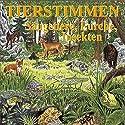 Tierstimmen - Säugetiere, Lurche, Insekten: Mit gesprochenen Erläuterungen Hörbuch von Karl Heinz Dingler, Andreas Schulze Gesprochen von:  div.