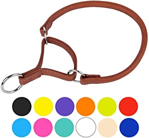 CollarDirect Rolled Martingale Dog Collar, Soft Padded Handmade Genuine Leather Martingale Collars for Dogs, Puppy Small Medium Large Black Pink Brown White...
