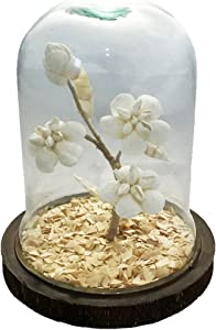 Large Glass Globe with Flower