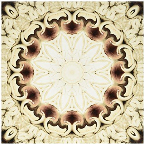3dRose ct_42063_3 T Gemstone Decorative Mosaic Window Mandala-Ceramic Tile, 8-Inch -