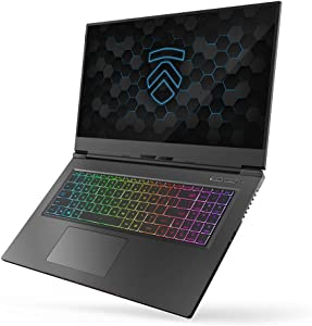 "MAX-17 Ultra Performance 17.3"" Gaming Laptop PC: Liquid Metal Intel i7-10875H 8 Core NVIDIA GeForce RTX 2070 Super 240Hz Calibrated Full HD Windows 10 Professional 2TB NVMe SSD 32GB DDR4 2933MHz RAM"