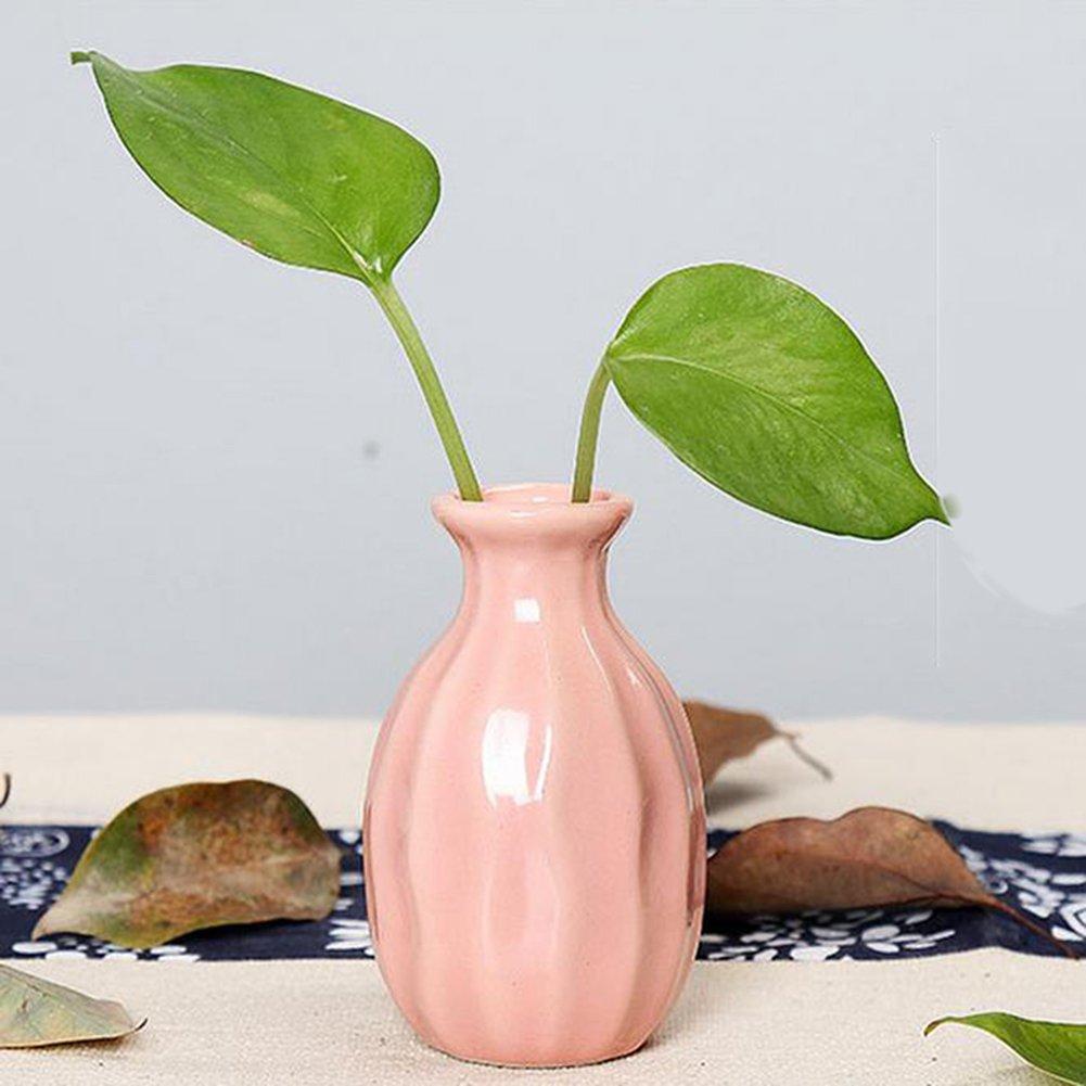 Light Green JUNGEN Ceramic Vase Flower Pots Plant Container for Office Home Table Desktop Decoration