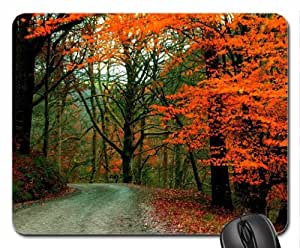 ALONG the AUTUMN ROAD Mouse Pad, Mousepad (Forests Mouse Pad)
