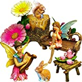 Cheap Mood Lab Fairy Garden – Miniature Figurines and Accessories Kit – Hand Painted Fairy Garden Set of 11 pcs for Outdoor or House Decor